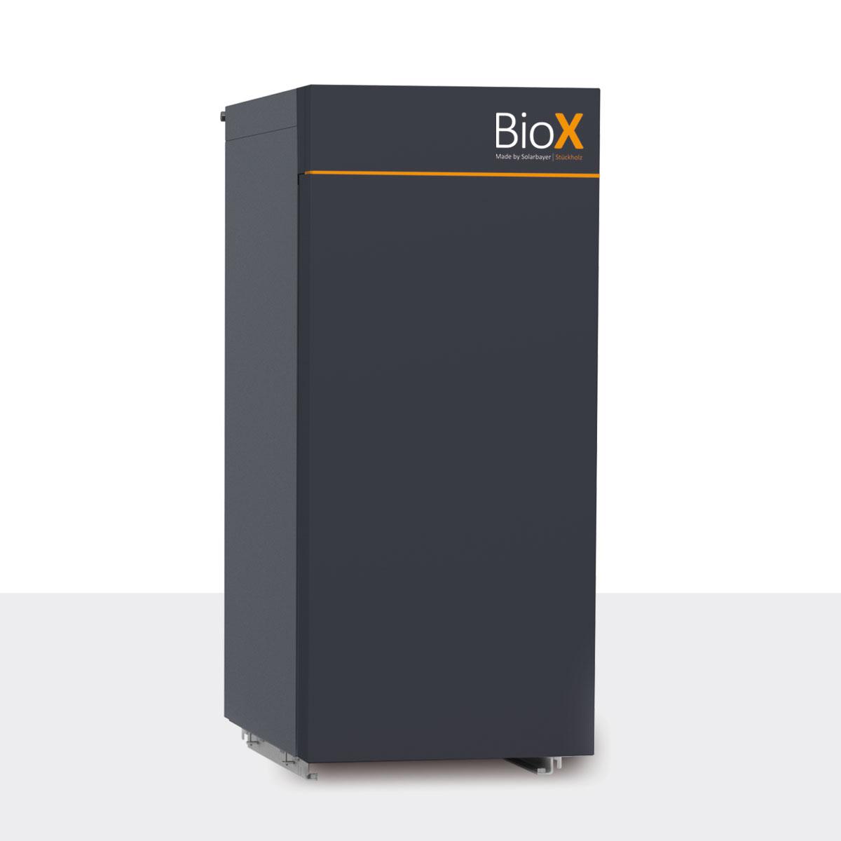 Fabulous Holzvergaser BioX mit Lambda-Regelung PR66